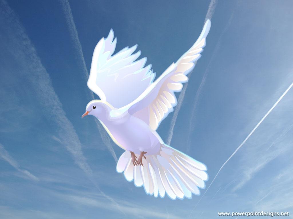 Doves Christian